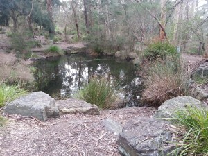 Natural pond for water storage