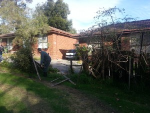 Removing fence sections held up by plants
