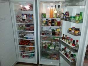 Doors open on the fridge and freezer showing the contents
