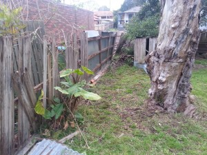 Old fence with palings removed
