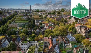 Amsterdam as a sustainable city