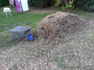 Using a wheelbarrow to move mulch from the pile to the back garden.