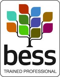 BESS sustainability assessments