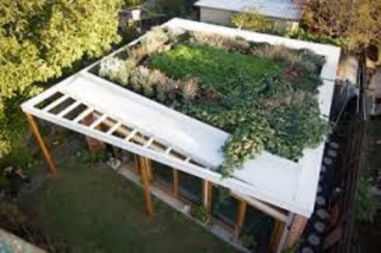 Green roof on suburban house