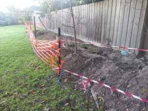 Exploration trench along the fence line